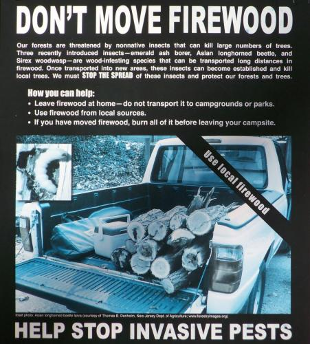 Jigger Johnson Campground on the Kancamagus Highway Firewood Policy