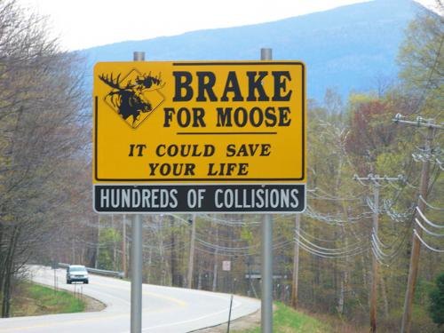 Kancamagus Highway Sign: Brake For Moose It Could Save Your Life